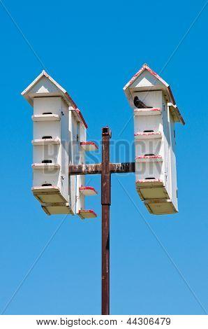 Multiple White Bird Houses
