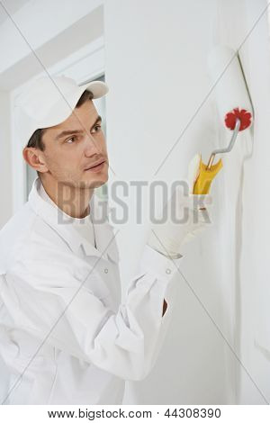 One male house painter worker painting and priming wall with painting roller