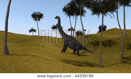 brachiosaurus on grassy hill