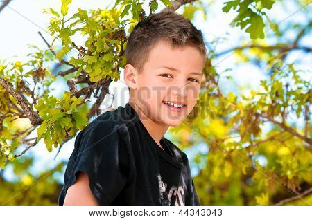 Young Boy Up In The Tree