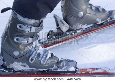 Ski Bounds