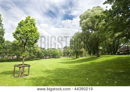 Westbourne Green park
