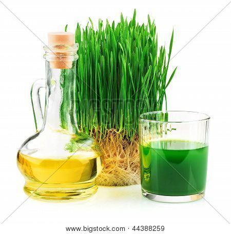 El jugo de trigo germinado y aceite de germen de trigo