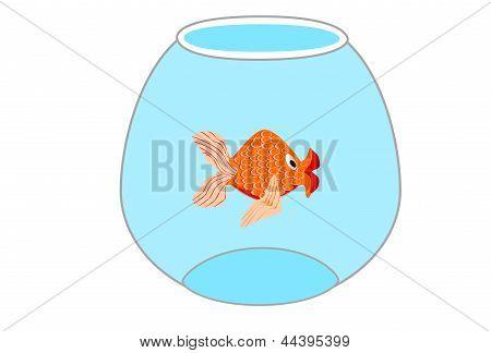peces dorados en el tazón de fuente