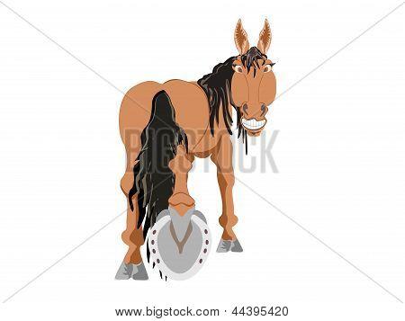 brown horse showing horseshoe