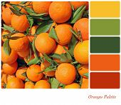 A background of fresh oranges on a market stall, in a colour palette with complimentary colour swatc