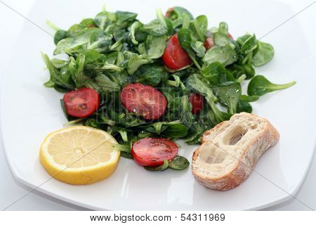 Field salad with tomatoes