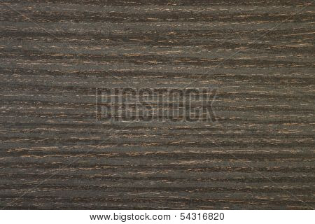 Marsh Oak Wooden Texture