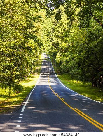 Beautiful Scenic Country Road Curves Through Shenandoah  National Park
