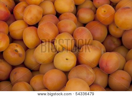 Plum background