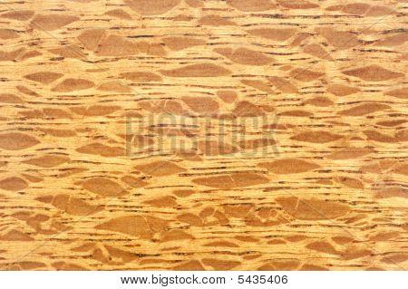 burl wood design