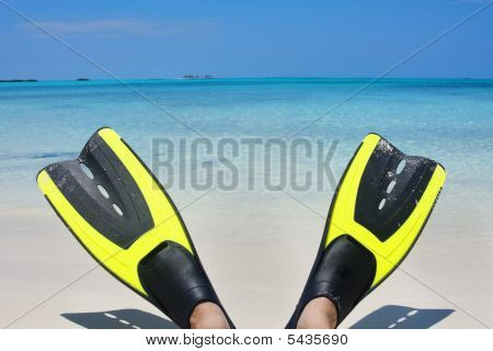 Scuba Fins On The Beach