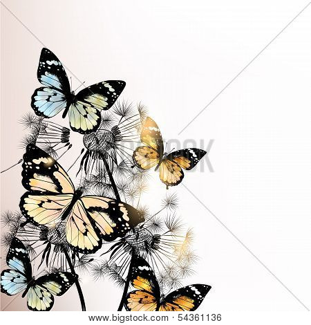 Floral Background With Butterflies And Dandelions