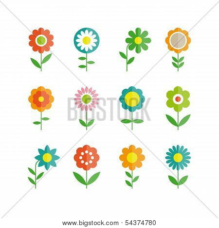 flowers vector design