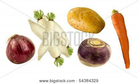 fresh root vegetables