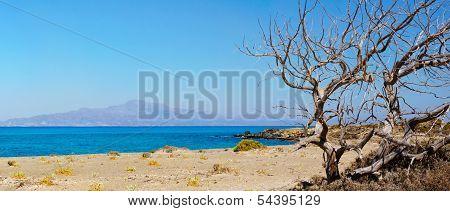 Amazing Beach Of Chrissi Island, Near Crete, Greece