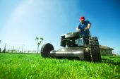 stock photo of grass-cutter  - Man mowing the lawn - JPG