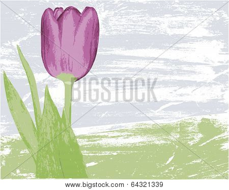 grungy floral vector background