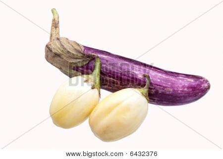 Clipped Mixed Aubergine