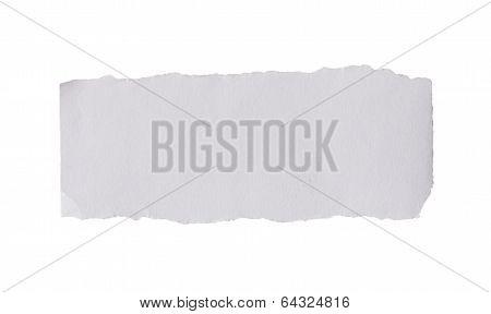 Blank Torn Paper