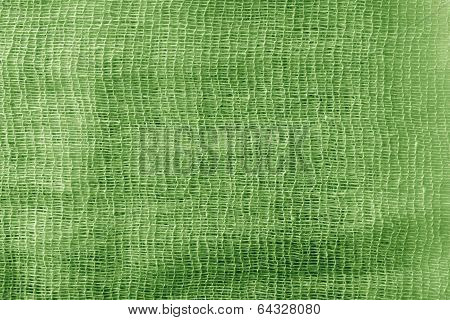 The Painted Gauze Texture Of  Green Color