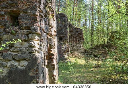 Remnants Of Old And Destroyed Buildings In Forest