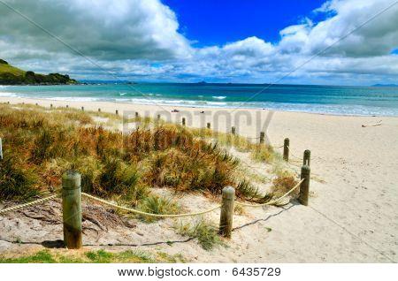 Serene Beach Mt Manganu,i Bay of Plenty, New Zealand