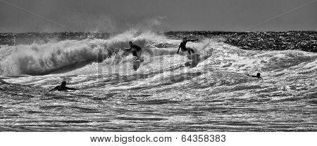 Four surfers at Manly Beach