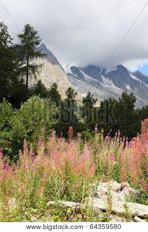 alpine landscape at Mont Blanc