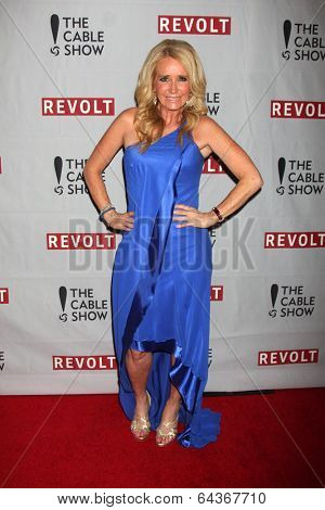 LOS ANGELES - APR 30:  Kim Richards at the NCTA's Chairman's Gala Celebration of Cable with REVOLT at The Belasco Theater on April 30, 2014 in Los Angeles, CA