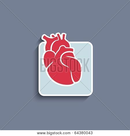 Vector paper-cut  icon with human organ heart