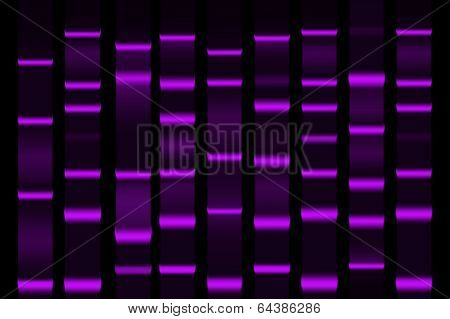 Gel Electrophoresis Separation