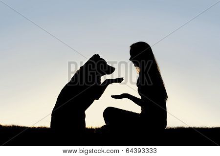Woman And Her Pet Dog Outside Shaking Hands Silhouette