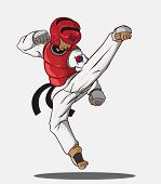 image of taekwondo  - create cartoon taekwondo martial art - JPG