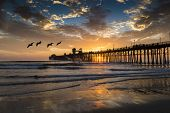 foto of mile  - Pelicans fly near the pier during a colorful sunset reflected in the clouds and water near Oceanside - JPG