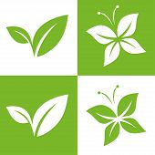 stock photo of solids  - Leaf Pair Icon Vector Illustrations on Both Solid and Reversed Background - JPG