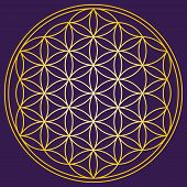 stock photo of hexagon pattern  - Flower of Life  - JPG