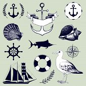 stock photo of albatross  - Vector set of decorative sea elements and vintage hand drawn sea illustrations - JPG