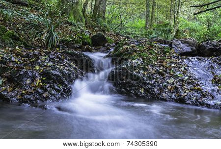 Little Cascades, River Toplica