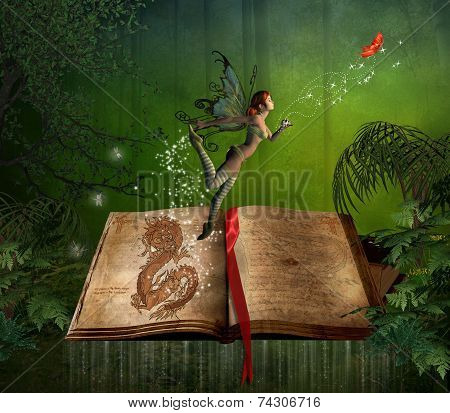 The Fairy Of The Book