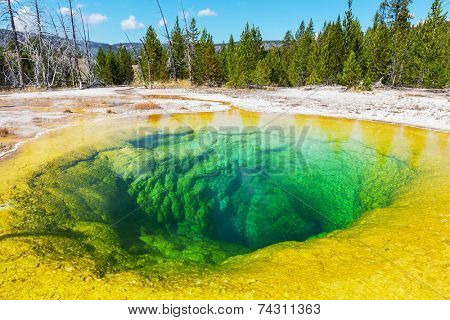 Morning Glory Pool,Yellowstone NP,USA