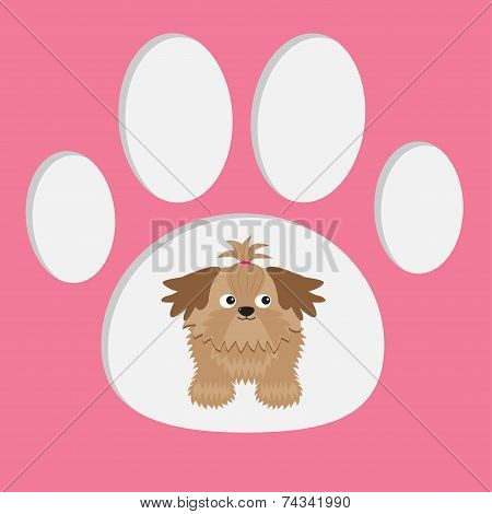 Little Glamour Tan Shih Tzu Dog In The Paw Print. Card