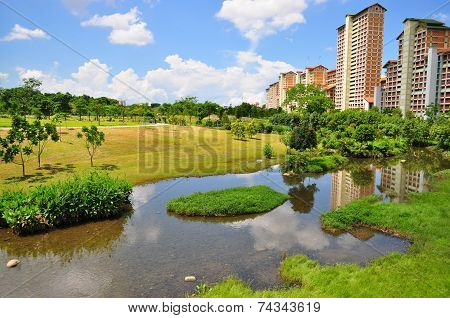 Green pasture with a river at Bishan Park