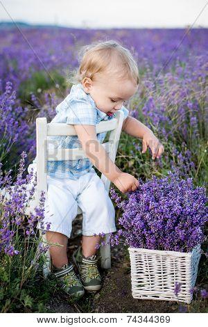 Toddler Cute Boy Playing