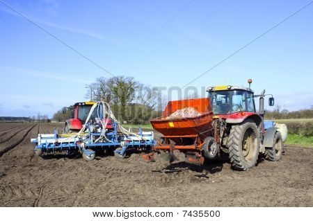 Preparing To Plant Potatoes