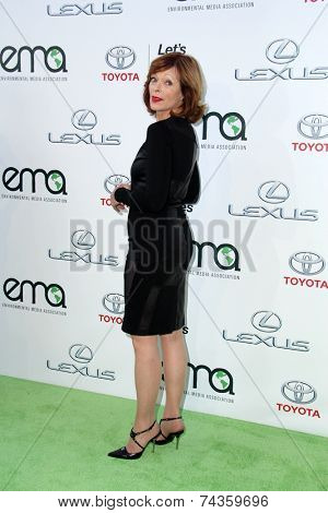 LOS ANGELES - OCT 18:  Frances Fisher at the 2014 Environmental Media Awards at Warner Brothers Studios on October 18, 2014 in Burbank, CA