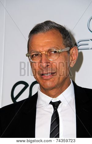 LOS ANGELES - OCT 18:  Jeff Goldblum at the 2014 Environmental Media Awards at Warner Brothers Studios on October 18, 2014 in Burbank, CA