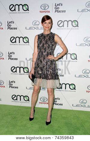LOS ANGELES - OCT 18:  Darby Stanchfield at the 2014 Environmental Media Awards at Warner Brothers Studios on October 18, 2014 in Burbank, CA
