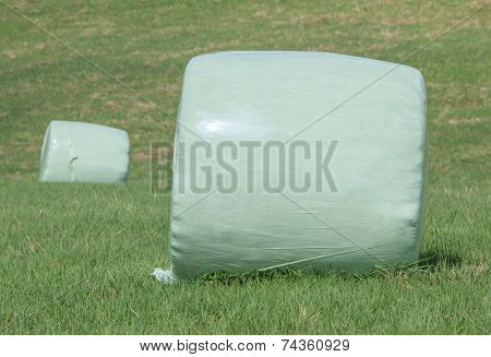 The Wrapped Round Hay Bales (silage) On The Green Field.