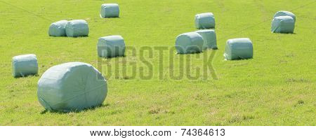 Bales Of Silage At The Green Field In Summer.
